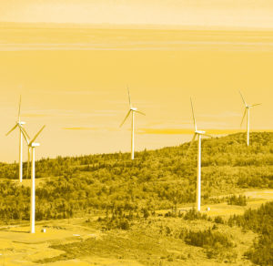 Environment - Digby Neck wind farm